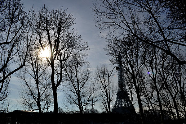 The Eiffel Tower against tree lined street